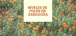 La Estación de Aerobiología del Colegio Oficial de Farmacéuticos de Zaragoza,  con la colaboración del Ayuntamiento, comienza la difusión diaria  de los niveles de polen en Zaragoza